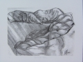 DIMANCHE MATIN - LITHOGRAPHIE SUR POLYMÈRE - 7 x 10 - 30.00$